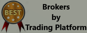 Best Brokers by trading platform in India