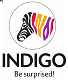 Indigo Paints IPO Live Subscription