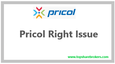 Pricol Right Issue Review